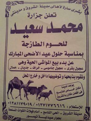 جزارة محمد سعيد